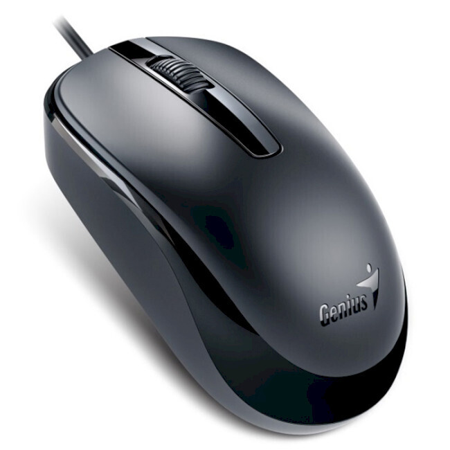 Мышь GENIUS DX-120 Calm black