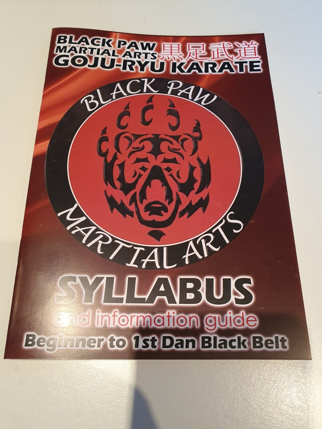 Replacement Karate Syllabus Book