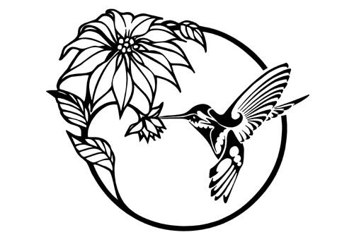 Flowers & Humming bird