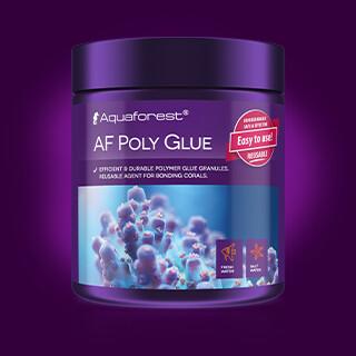 Aqua Forest Poly Glue