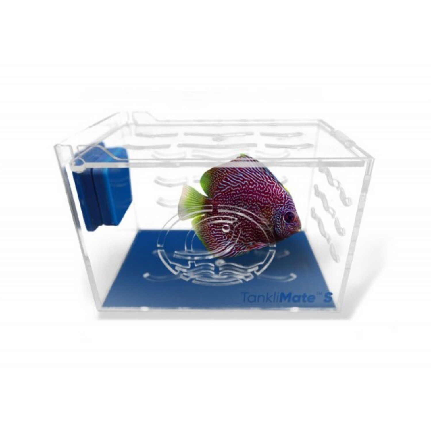 Eshopps Tanklimate Acclimation Box Small 6x4x4