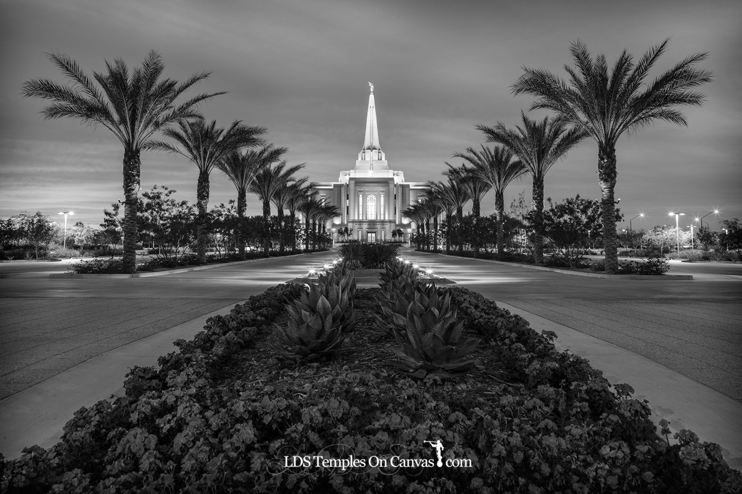 Gilbert Arizona LDS Temple - Heavenly Path - Black & White