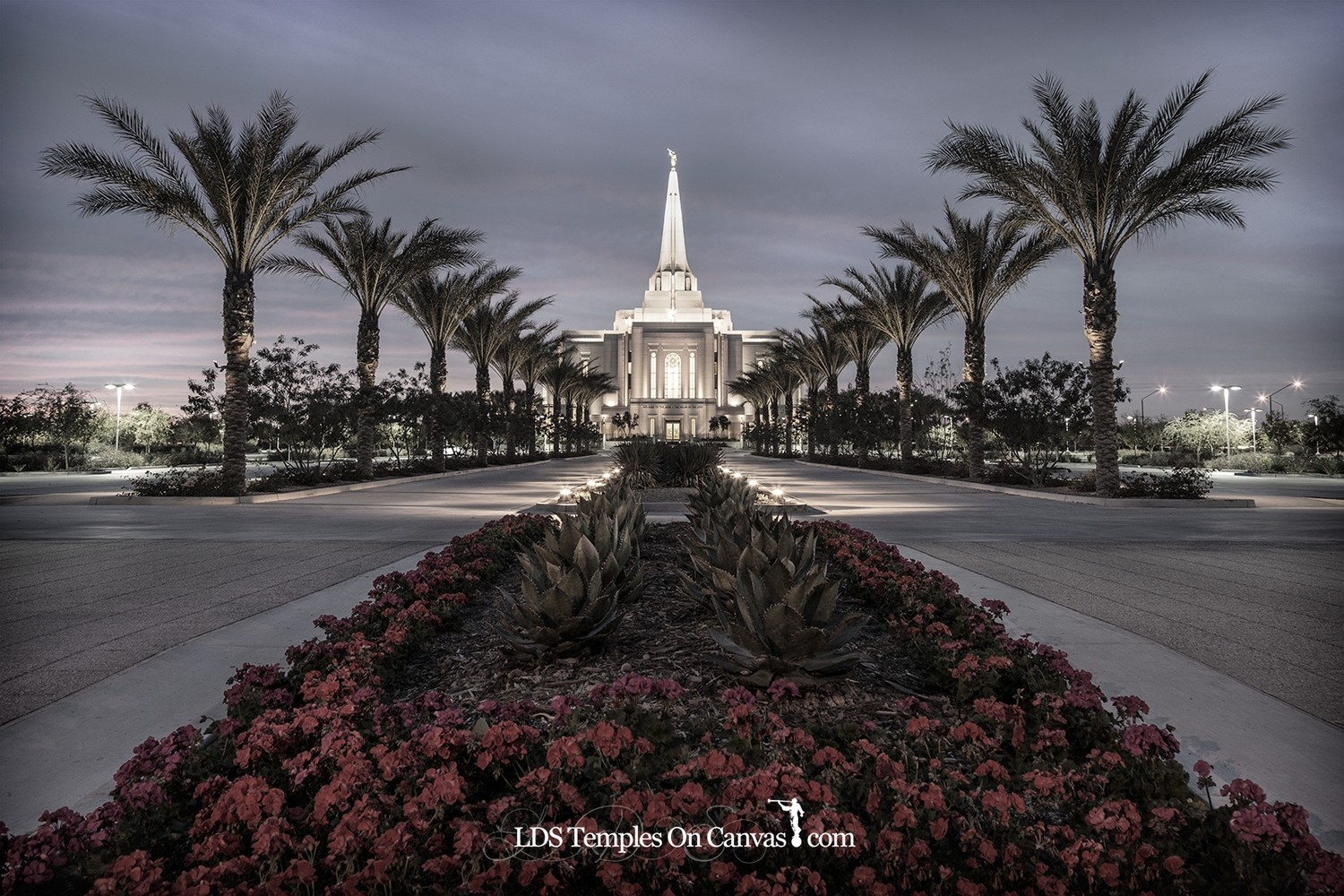 Gilbert Arizona LDS Temple - Heavenly Path - Tinted Black & White