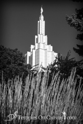 Idaho Falls Idaho Temple Art - Beacon of Light - Black & White
