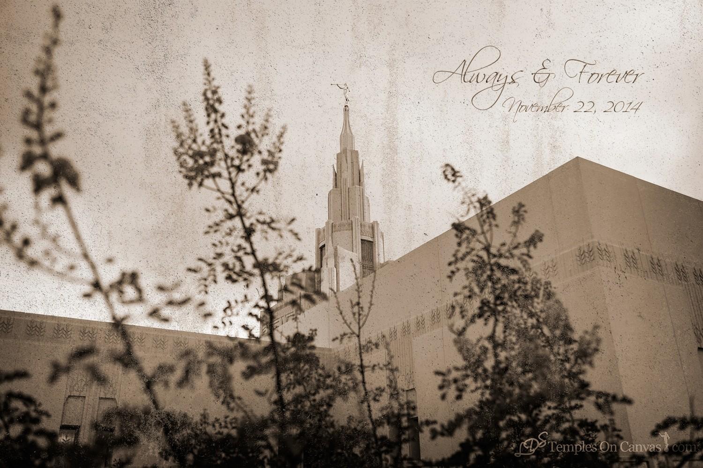 Phoenix AZ LDS Temple - Desert Blossom - Rustic Print