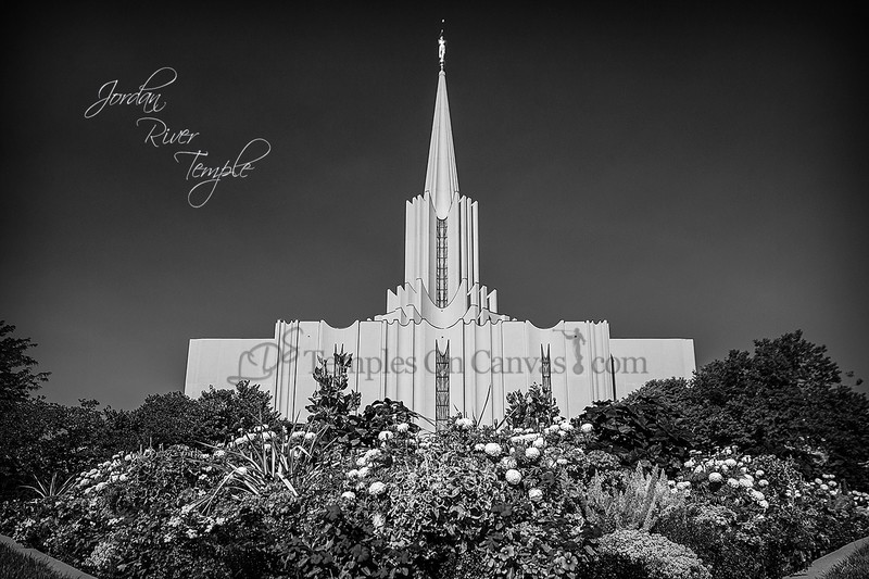 Jordan River Utah Temple Art - Summer Flowers - Black & White