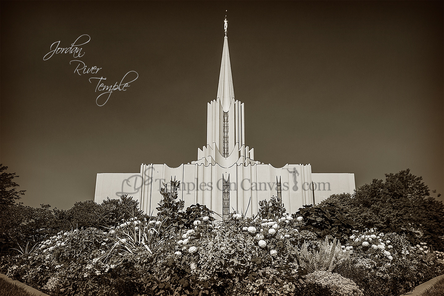 Jordan River Utah Temple Art - Summer Flowers - Sepia