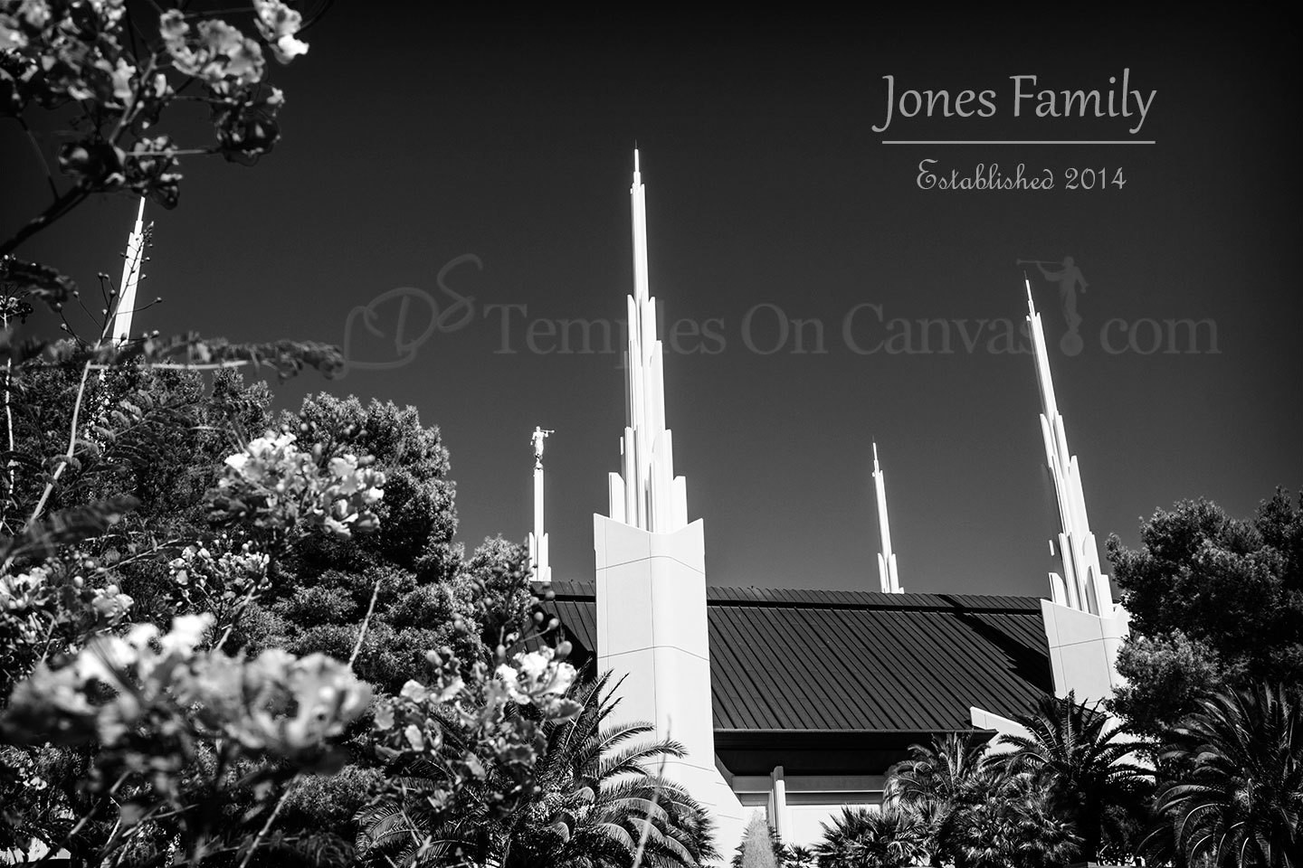 Las Vegas Nevada Temple Art - Desert Flower - Black & White