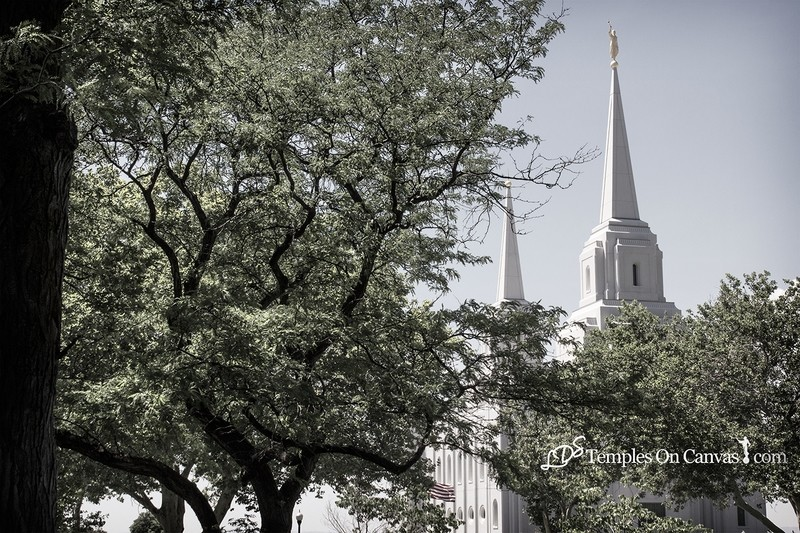 Brigham City Utah Temple - Rise Above - Tinted Black & White