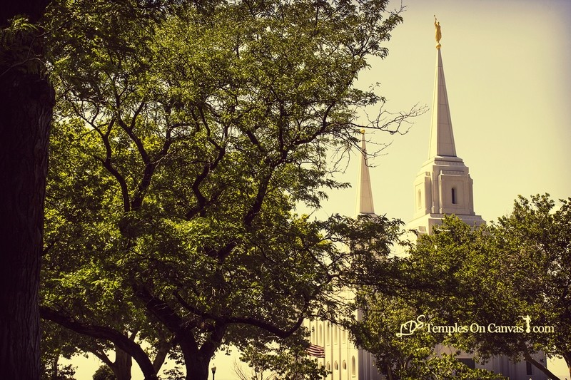 Brigham City Utah Temple - Rise Above - Vintage