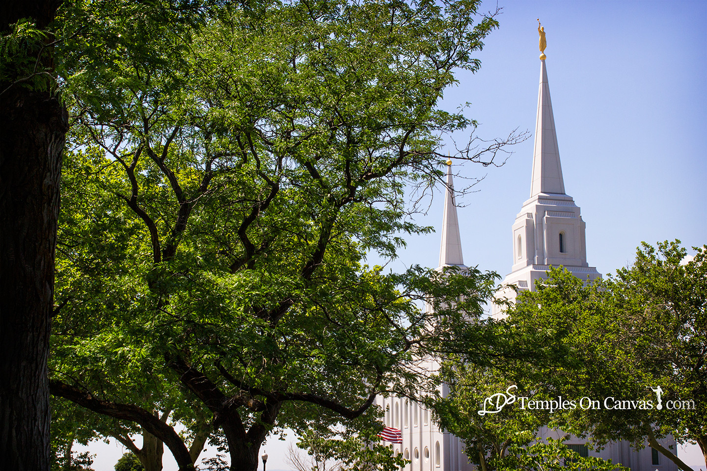Brigham City Utah Temple - Rise Above