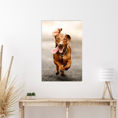 40x60 cm print på fotopapir