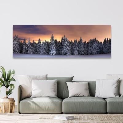 50x150cm print på aluplate