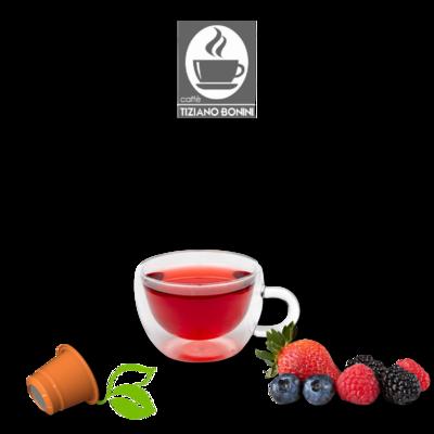 Bonini Nespresso Frutti Di Bosco  Шумско Овошје ЧАЈ х10пар.