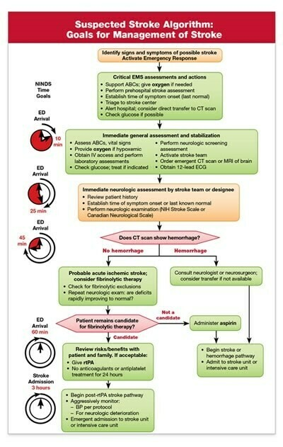 Suspected Stroke Algorithm/Prehospital Stroke Scale Card (Package of 25) 15-1043