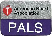 PALS Lapel Pin  (90-1533) 10/pkg