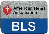 BLS Lapel Pin  90-1534 (10/pkg)