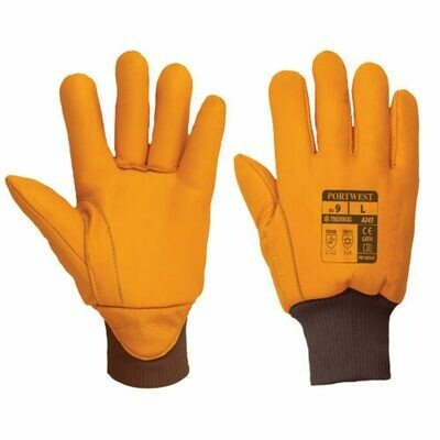 Clothing - Gloves - Antartica Insulatex Glove (PORTWEST)