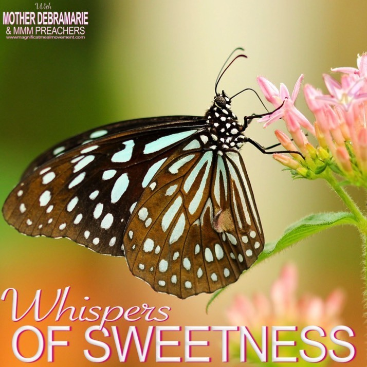 Whispers of Sweetness 10210