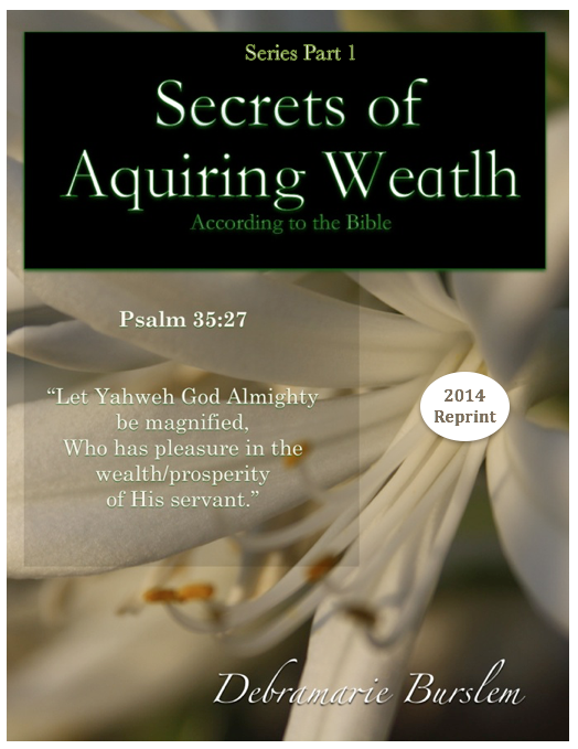 The Secret Of Acquiring Wealth Series - Part One EB1604