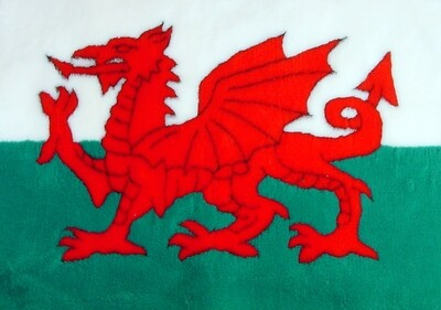 { Single Sheets } : Ultra Premium Non-Slip Backing Original Vet Bedding Fleece : Welsh Dragon Pattern - Ref : (6364)