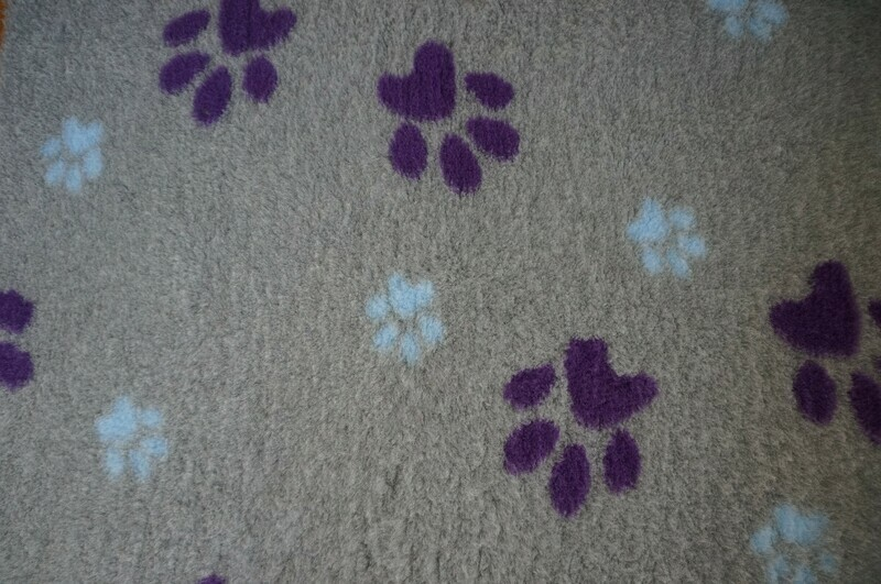 Minimum {15 x Metre Roll} : Ultra Premium - Non Slip Backing :   Big Paw - Grey With Large Regal & Small Blue Paws - Ref : (6312)