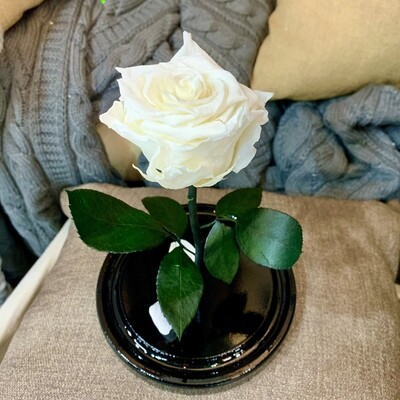 Роза в колбе Мини белая