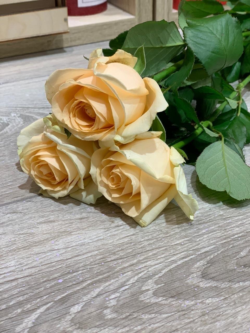 Роза чайная, по-штучно