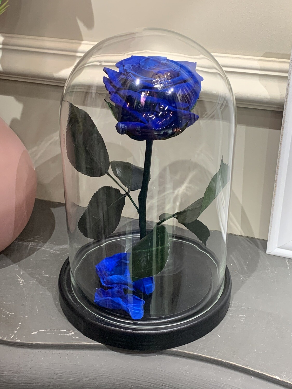 Роза в колбе Мини синяя