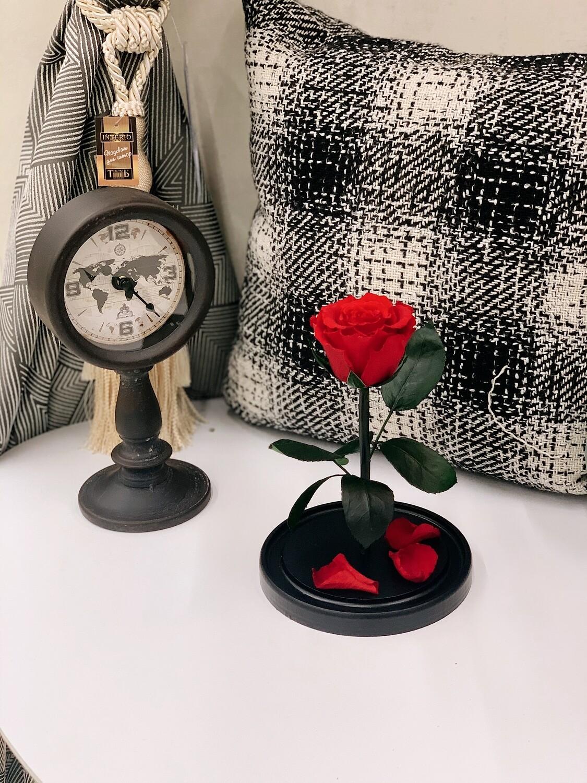 Роза в колбе Мини красная