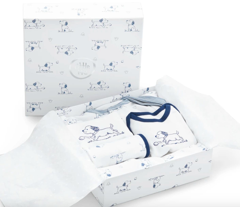 Puppy Toile Gift Box