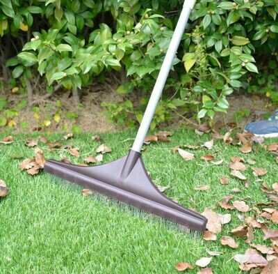 Astro Turf Brush