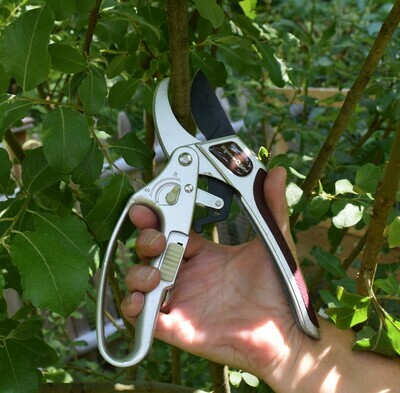 Dual Kut 2-in-1 Anvil Ratcheting Pruner