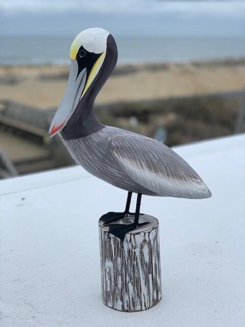 Avio Wooden Pelican