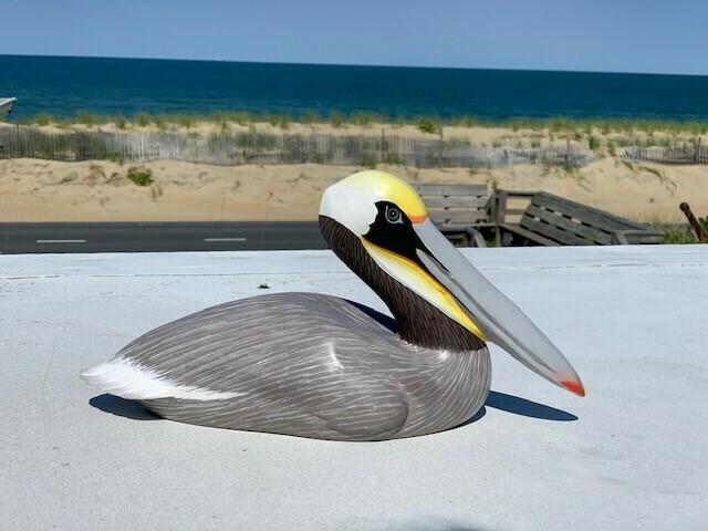 Avio Sitting Wooden Pelican