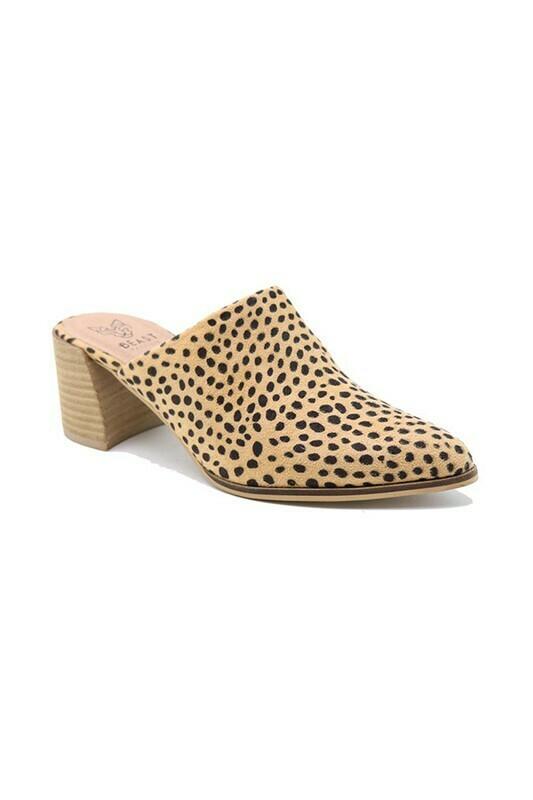 My Fav Mule-Cheetah