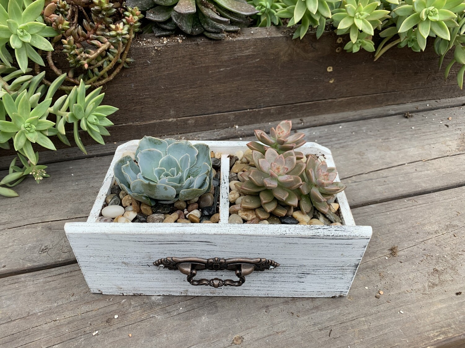 Wooden Drawer Succulent Planter (Option 2)