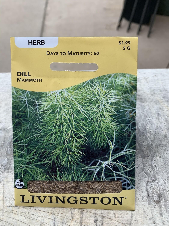 Dill Mammoth (Seed) $1.99