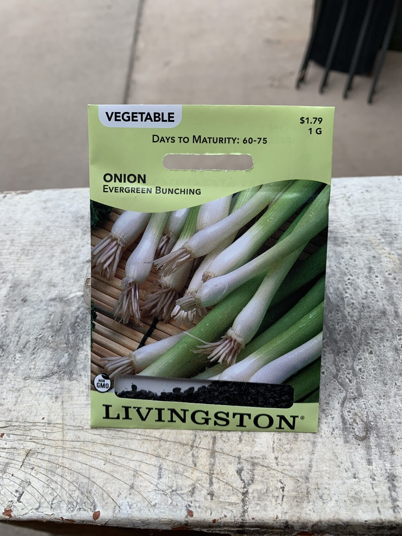 Onion Evergreen Bunching (Seed) $1.79