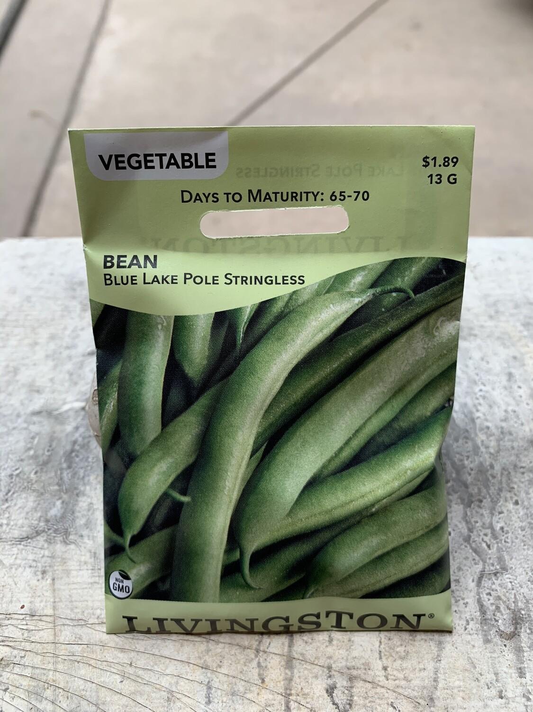 Bean Blue Lake Pole STRINGLESS (Seed) $1.89