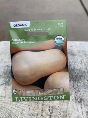 Organic Squash Waltham Butternut (Seed) $2.99