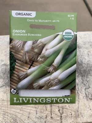 Organic Onion Evergreen Bunching (Seed) $2.99