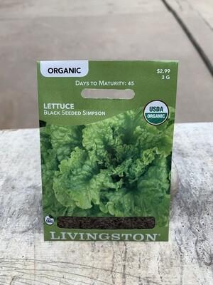 Organic Lettuce Black Seeded Simpson (Seed) $2.99