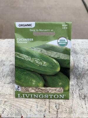 Organic Cucumber Muncher (Seed) $2.99