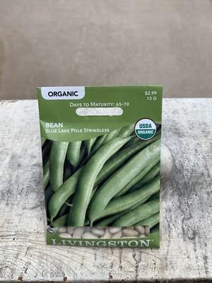 Organic Bean Blue Lake Pole STRINGLESS (Seed) $2.99