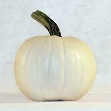 7088 Moonshine (pumpkin) $5.00