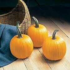 7124 Touch of Autumn (pumpkin) $1.50