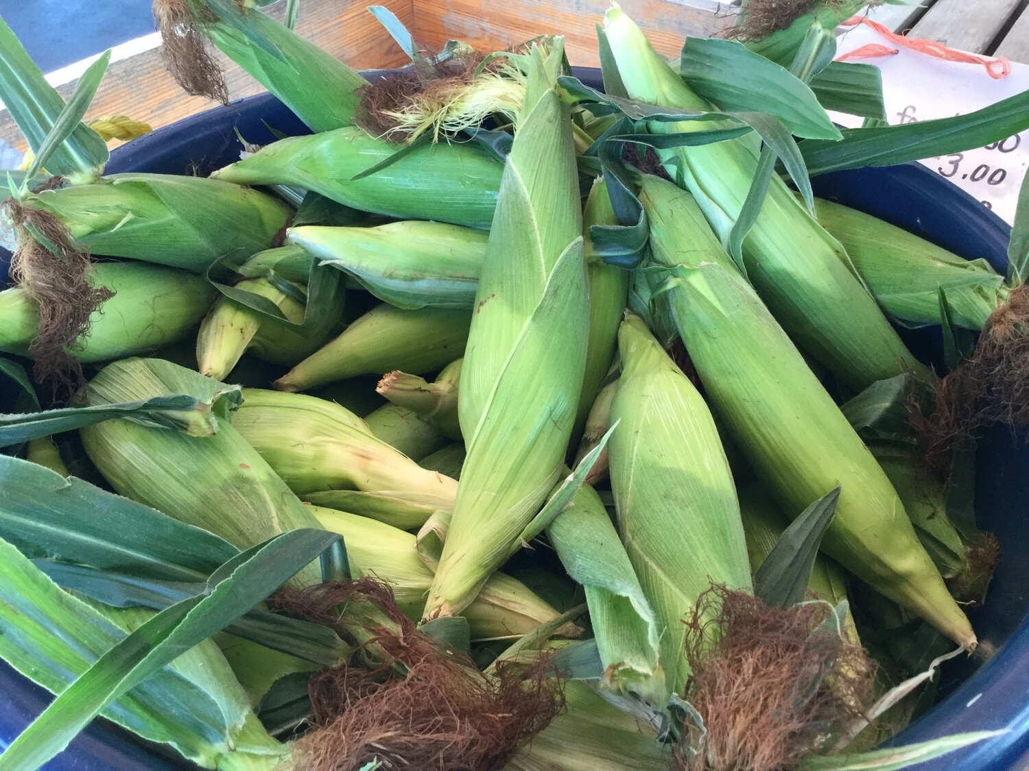 Sweet Corn $0.65 (produce)