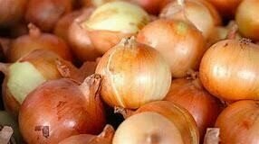 Candy Onions (produce) $1.50