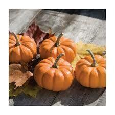 7216 Munchkin (pumpkin) $1.49